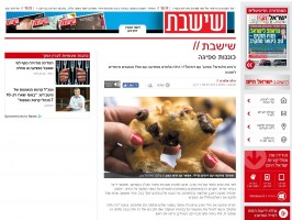 כוננות ספיגה / חנוכה בישראל היום